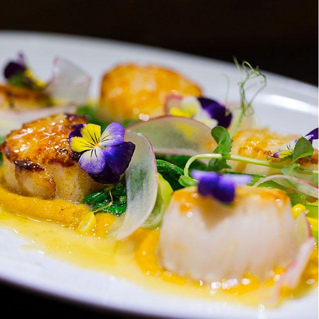Best Miami Restaurant Instagram Accounts To Follow Digest