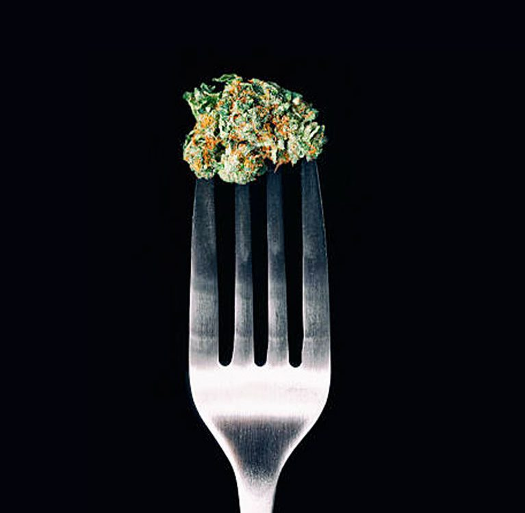 US Cannabis Expo Miami